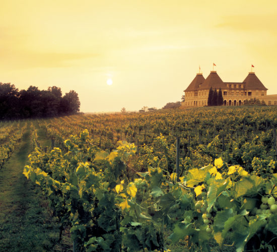 Signature-Winery