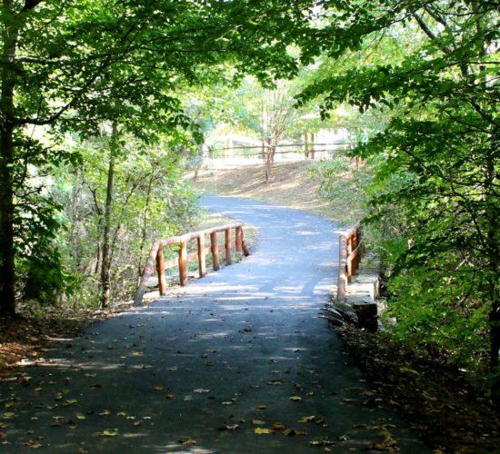 bunten-road-park