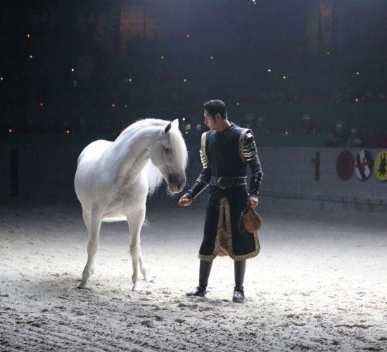 Master Horse