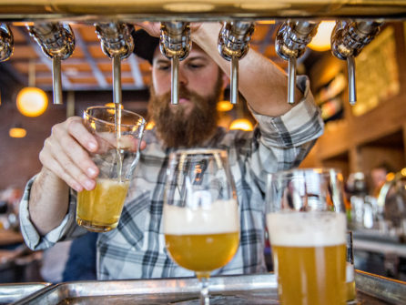 Beer bartender with taps at brewery