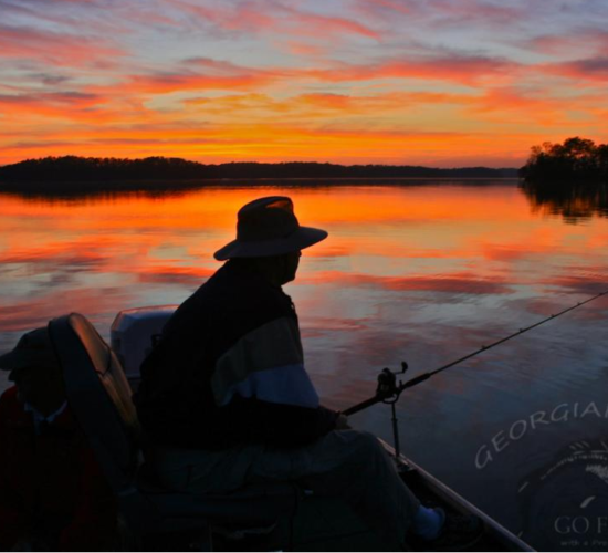 fishing lanier
