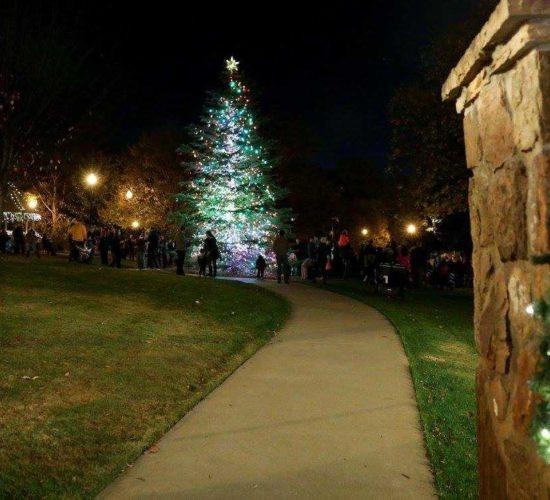 Best Gwinnett Christmas Light Displays 2021 Explore Gwinnett Guide To Gwinnett Tree Lightings