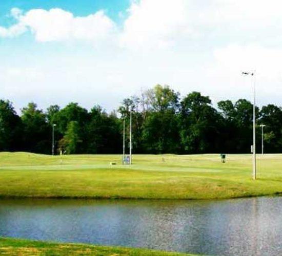 ptree golf