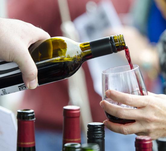 Suwanee Wine Fest 7